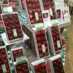 Strawberry Tree in the store Hankyu